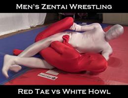 Zentai Wrestling